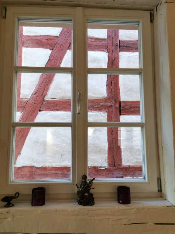 Fenster Fuerth Silberfischla