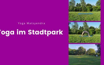 Wir starten mit Yoga im Fürther Stadtpark